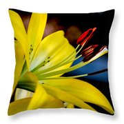 Yellow Lily Anthers Throw Pillow by Robert Bales
