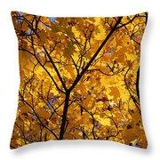 Yellow Maple 3 Throw Pillow