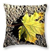Yellow Maple Leaf On Asphalt Throw Pillow