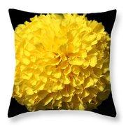 Yellow Marigold Throw Pillow