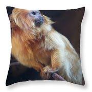 Yellow Monkey Throw Pillow