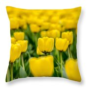 Yellow On My Mind Throw Pillow