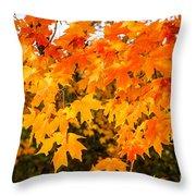 Yellow Orange Fall Tree Throw Pillow