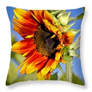 Yellow Orange Sunflower Throw Pillow
