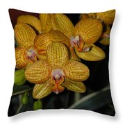 Yellow Orchids Throw Pillow