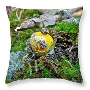 Yellow Patches Baby Mushroom - Amanita Muscaria Throw Pillow