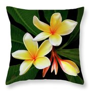 Yellow Plumeria Throw Pillow by Ben and Raisa Gertsberg