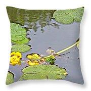 Yellow Pond Lilies On Lake Yellowhead Along Yellowhead Highway-b Throw Pillow