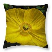 Yellow Poppie Throw Pillow