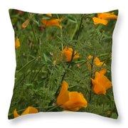 Yellow Poppies Dsc07460 Throw Pillow