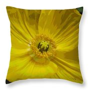 Yellow Poppy Flower Throw Pillow