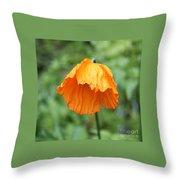 Yellow Poppy - Morning Dew Throw Pillow