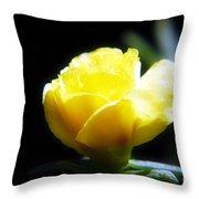 Yellow Primrose Throw Pillow