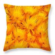 Yellow Radiance  Throw Pillow
