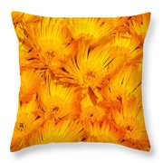 Yellow Radiance  Throw Pillow