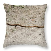 Yellow Rat Snake Throw Pillow