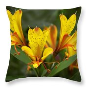 Yellow Red Flower Throw Pillow
