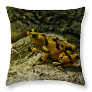 Yellow Rock Jumper Throw Pillow