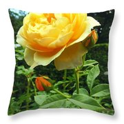 Yellow Rose And Buds Throw Pillow