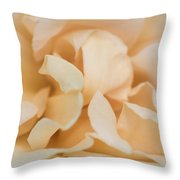 Yellow Rose - Featured 3 Throw Pillow