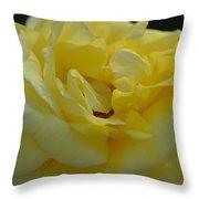 Yellow Rose Frills Throw Pillow