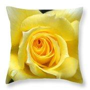 Yellow Rose L Throw Pillow