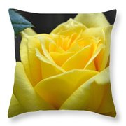 Yellow Rose Ll Throw Pillow