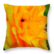 Yellow Rose With Lady Bug Throw Pillow