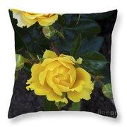 Yellow Roses Throw Pillow