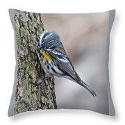 Yellow-rump Warbler Throw Pillow