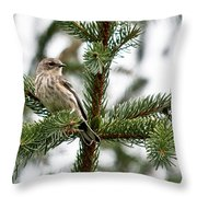 Yellow Rumped Evergreen Throw Pillow