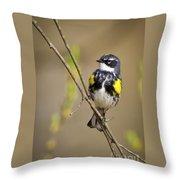 Yellow-rumped Warbler Throw Pillow