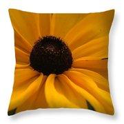 Yellow Silk Throw Pillow