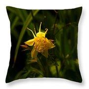 Yellow Splendor Throw Pillow