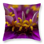 Yellow Stars Throw Pillow