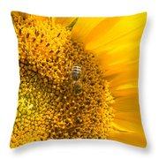 Yellow Sunflower - Detail Throw Pillow