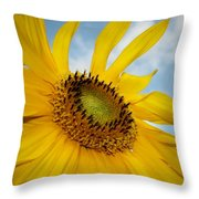 Yellow Sunflower Throw Pillow