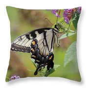 Yellow Swallowtail Butterfly Taking A Drink Throw Pillow