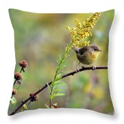 Yellow Throat In Late Summer Prairie Throw Pillow