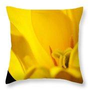 Yellow Tulip Closeup Throw Pillow