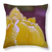 Yellow Tulip Dappled With Rain Throw Pillow