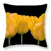 Yellow Tulip Triple Throw Pillow