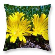 Yellow Twins Throw Pillow