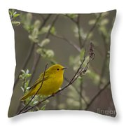 Yellow Warbler -1 Throw Pillow