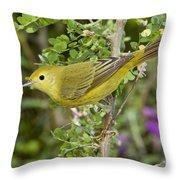 Yellow Warbler Hen Throw Pillow