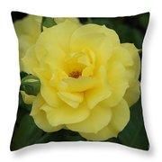 Yellow Wonder Rose...   # Throw Pillow