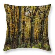 Yellow Woods On A Rainy Day Throw Pillow