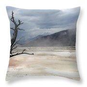 Yellowstone 21 Throw Pillow
