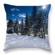 Yellowstone Sunshine Throw Pillow