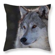 Yellowstone Wolf Throw Pillow